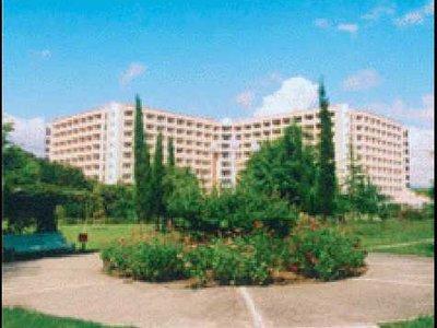 Отель Самшитовая роща 3* Пицунда Абхазия