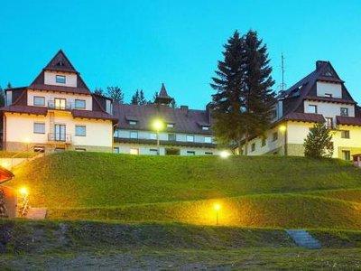 Отель Center Geovita Wisla Hotel & Conference 4* Висла Польша