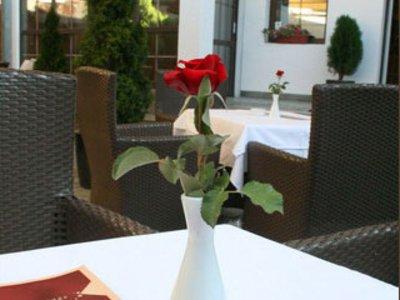 Отель Le Petit Piaf 3* Белград Сербия