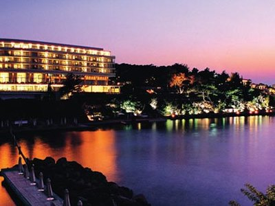 Отель Astir Palace Bungalows 5* Афины Греция