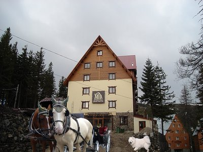 Отель Хата Магната 2* Драгобрат Украина - Карпаты