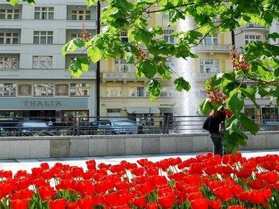 Отель Thalia Apartments 3* Карловы Вары Чехия