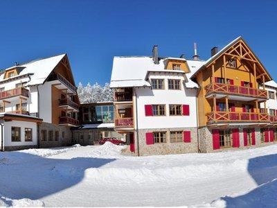 Отель Bolfenk Hotel & Apartments 4* Мариборское Похорье Словения