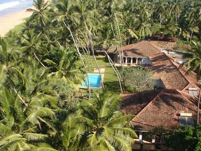 Отель Lotus Villa 4* Ахунгалла Шри-Ланка