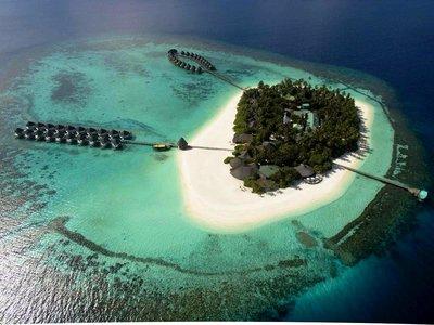 Отель Angaga Island Resort & Spa 4* Ари (Алифу) Атолл Мальдивы