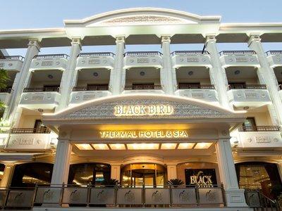 Отель Black Bird Thermal Hotel & Spa 4* Ялова Турция
