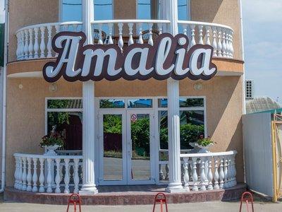 Отель Amalia Hotel 2* Железный Порт Украина