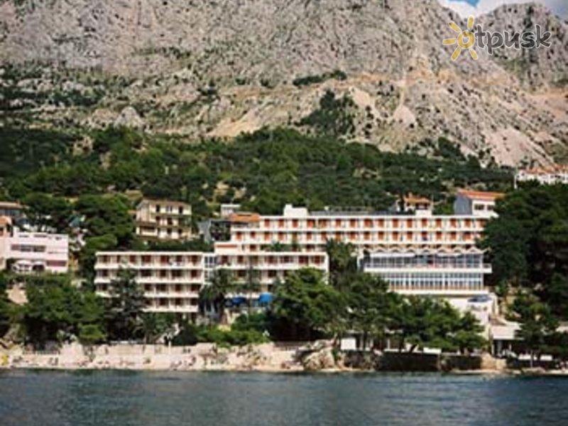 Отель Aurora 3* Подгора Хорватия