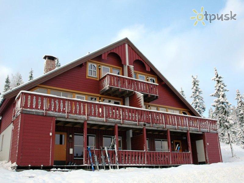 Отель Bakkebygrenda APT 3* Трюсиль Норвегия