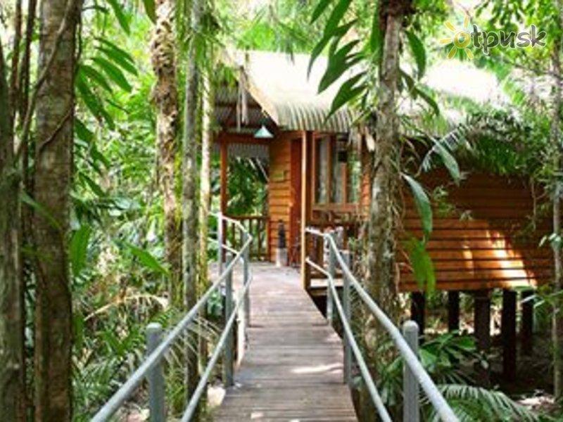 Отель Daintree Wilderness Lodge 3* Большой барьерный риф Австралия