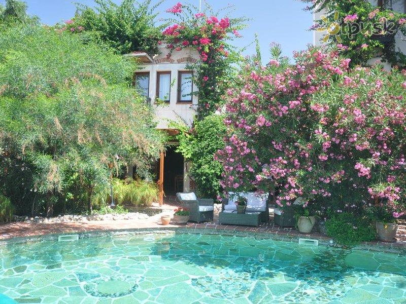 Отель El Vino Hotel & Suites 4* Бодрум Турция