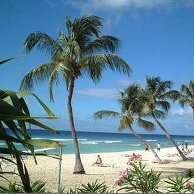 Отель Coconut Court Beach Hotel 3* Бриджтаун Барбадос