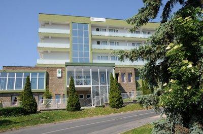Отель CE Hotel Fit 4* Хевиз Венгрия