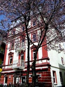 Отель Traube Hotel 3* Цель ам Зее Австрия