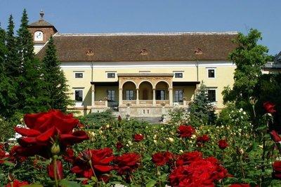 Отель Schloss Weikersdorf 3* Баден Австрия