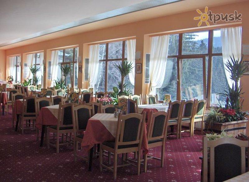 Фото отеля Bor Hotel 3* Боровец Болгария