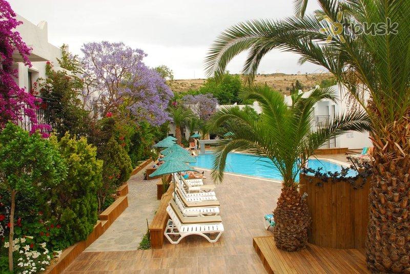 Фото отеля Club Flora Hotel 3* Бодрум Турция