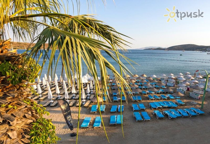 Фото отеля Gumbet Anil Beach Hotel 3* Бодрум Турция