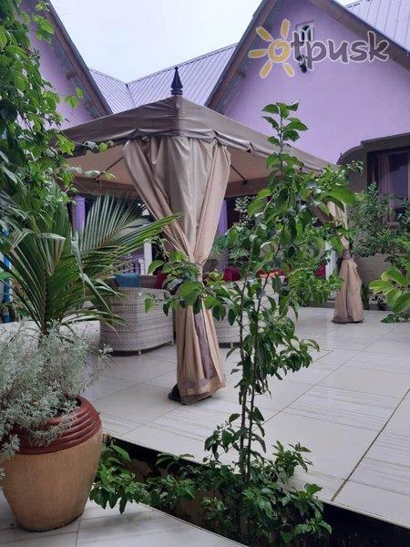 Фото отеля Dalma Zambarau Lodge 3* Занзибар Танзания