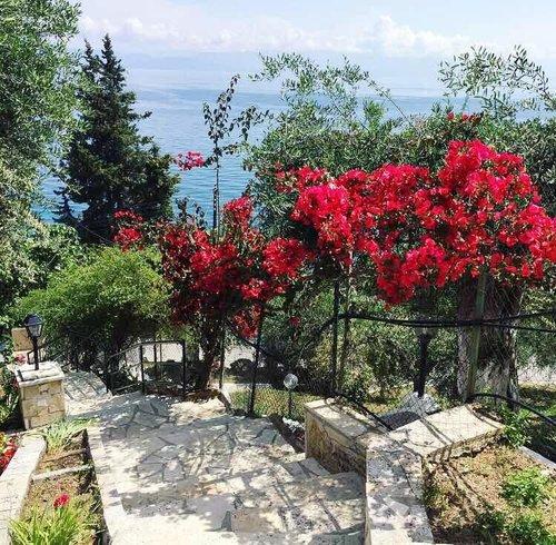 Тур в Casa dei Venti 1☆ Греція, о. Корфу