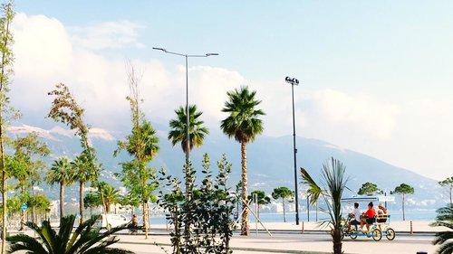Горящий тур в Erion's Apartment 3☆ Албания, Влера